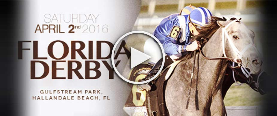 Watch Nyquist Win the 2016 Florida Derby