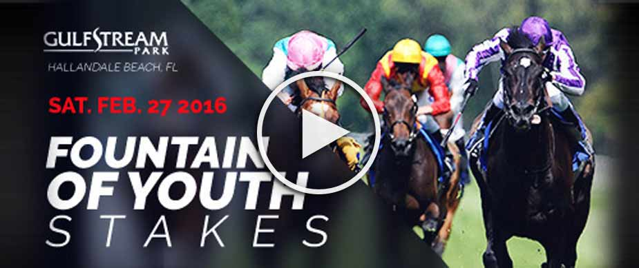 2016 Fountain of Youth Stakes Race Replay Mohaymen