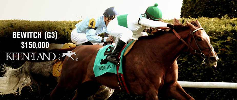 2016 Bewitch Stakes Preview, Entries & Odds