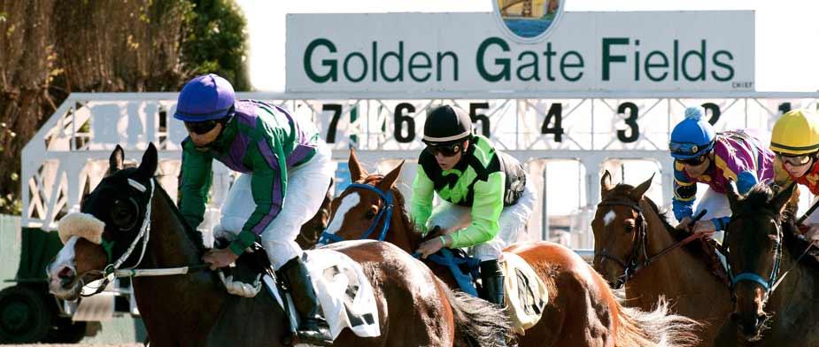 Bet Golden Gate Fields Horse Racing