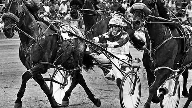Bet Harness Racing
