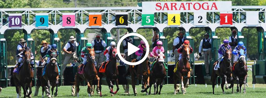 Watch Live Horse Racing Online For Free